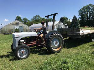 woman farmer driving Ford tractor with wagon