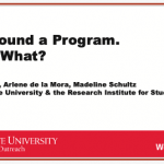 "Title slide of presentation ""We Found a Program. Now What?"""